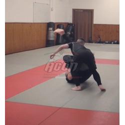 CADUTA LATERALE PER LE MMA...