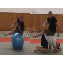 STABILITY BALL PER MMA E...
